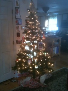Chrismas tree 2012