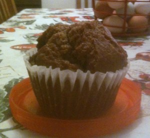 Bran muffin from Hannaford