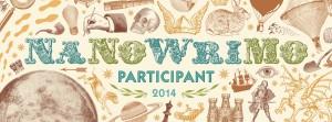 Participant-2014-Web-Banner-300x111
